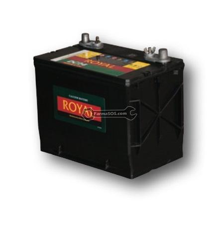 Royal 1 باتری 100 آمپر ساعت رویال کره جنوبی